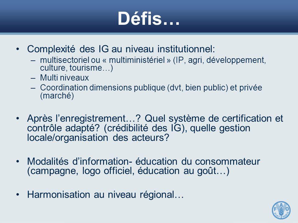Défis… Complexité des IG au niveau institutionnel: