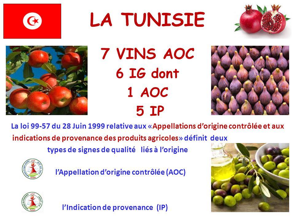 LA TUNISIE 7 VINS AOC 6 IG dont 1 AOC 5 IP