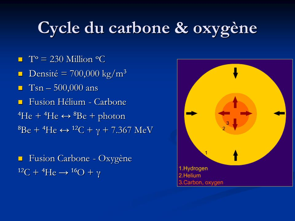 Cycle du carbone & oxygène