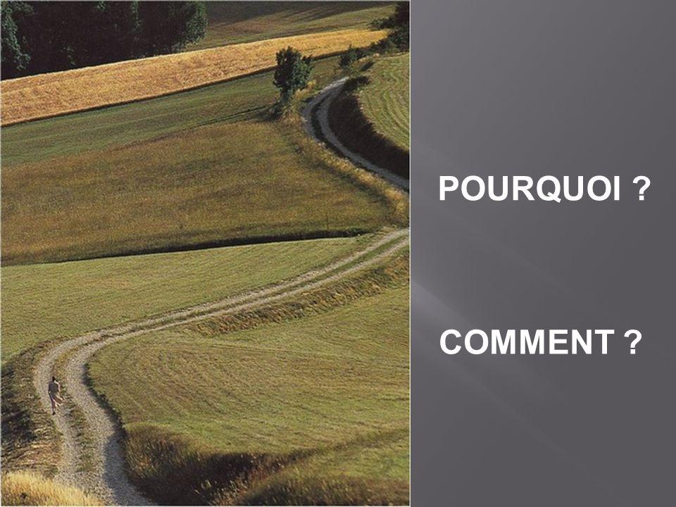 POURQUOI COMMENT