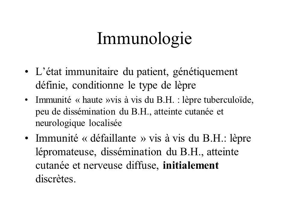 Immunologie L'état immunitaire du patient, génétiquement définie, conditionne le type de lèpre.