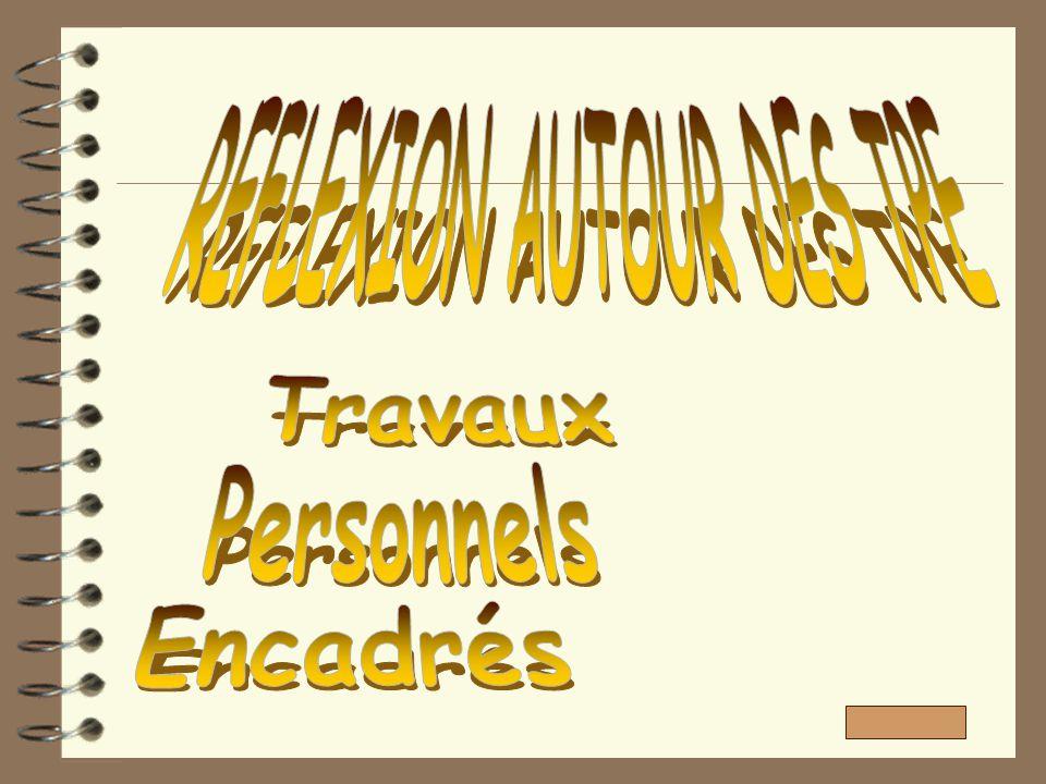 REFLEXION AUTOUR DES TPE