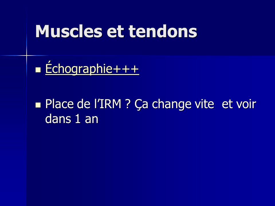 Muscles et tendons Échographie+++