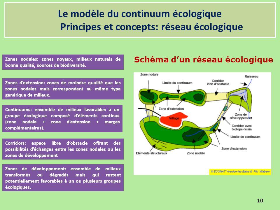 Le modèle du continuum écologique Principes et concepts: réseau écologique