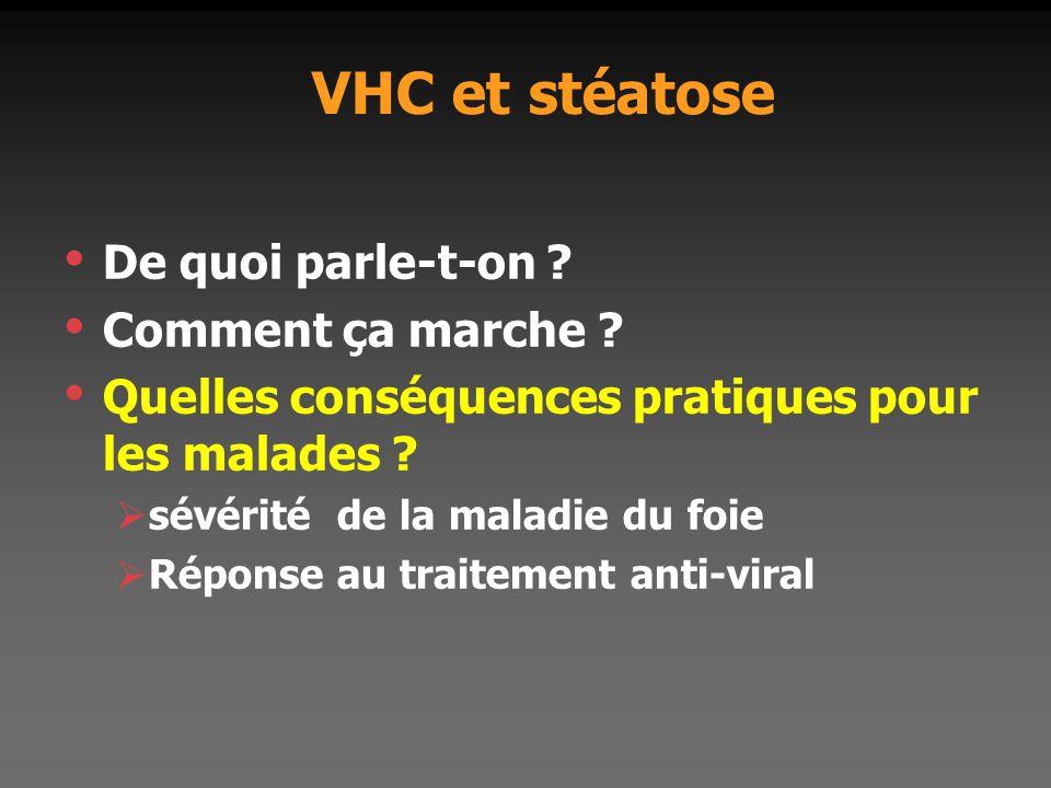 VHC et stéatose De quoi parle-t-on Comment ça marche