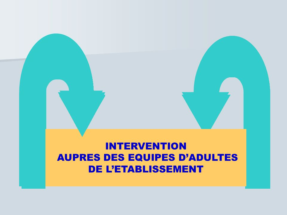 INTERVENTION AUPRES DES EQUIPES D'ADULTES DE L'ETABLISSEMENT