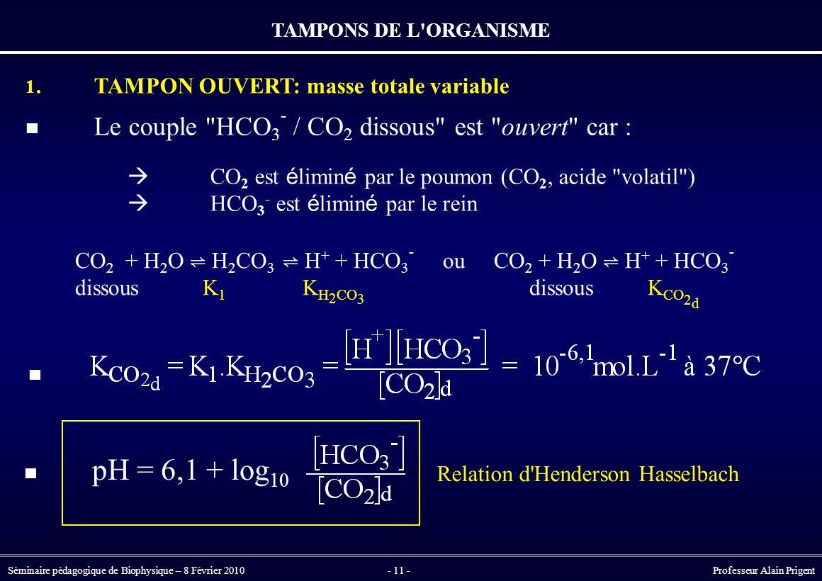  CO2 est éliminé par le poumon (CO2, acide volatil )