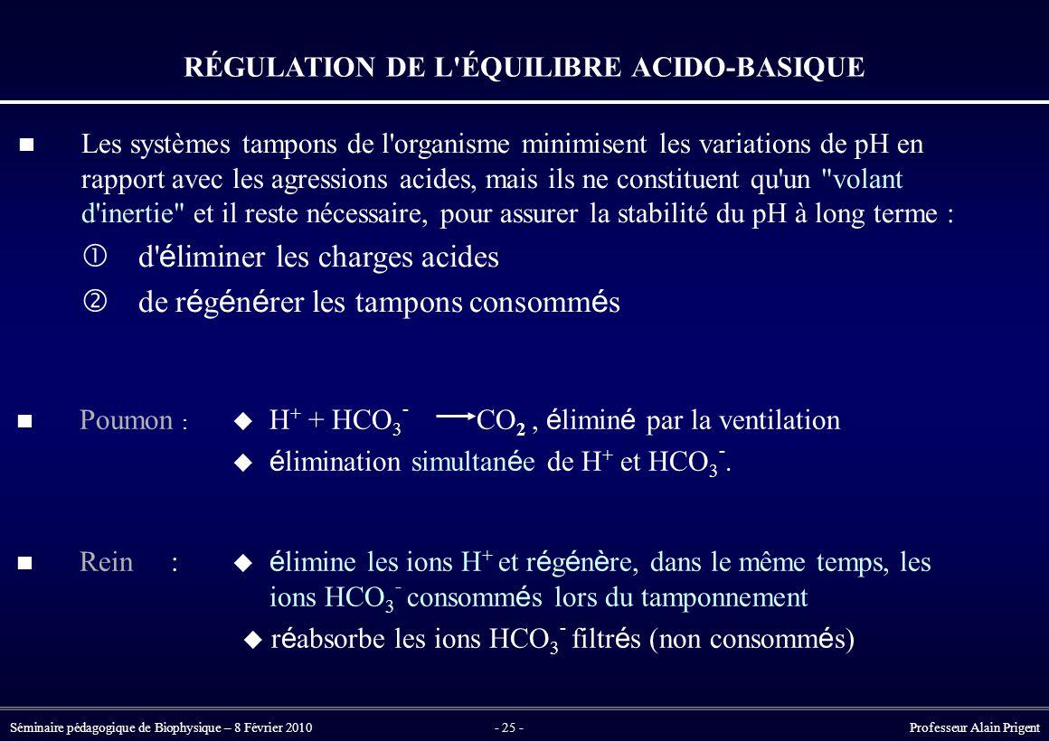 RÉGULATION DE L ÉQUILIBRE ACIDO-BASIQUE