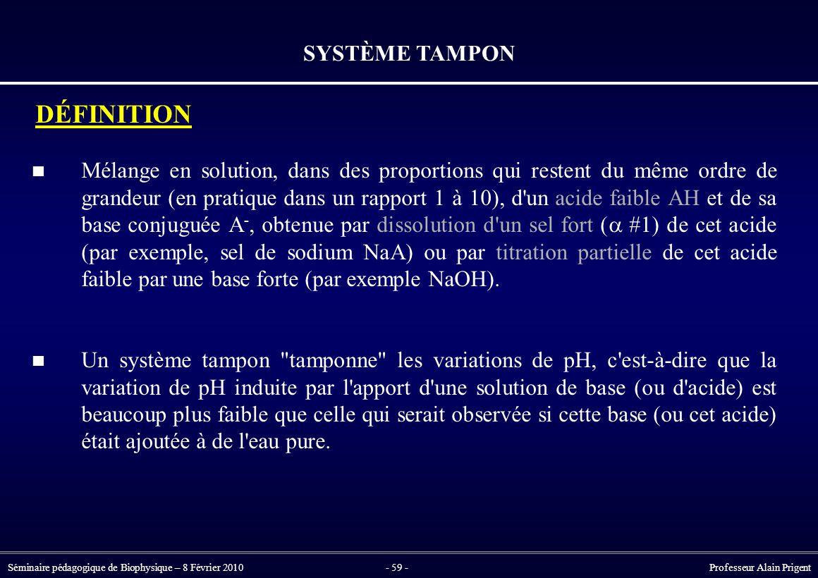 SYSTÈME TAMPON DÉFINITION.