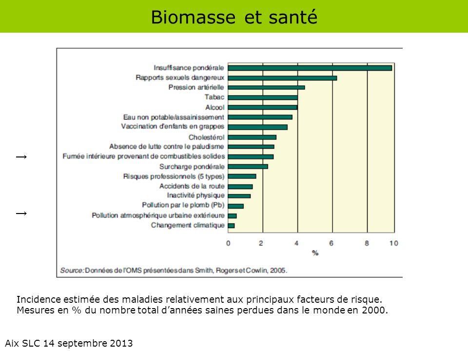Biomasse et santé → Incidence estimée des maladies relativement aux principaux facteurs de risque.