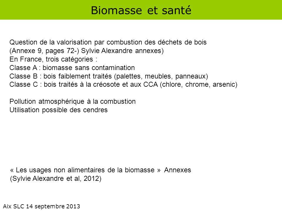 Biomasse et santé Question de la valorisation par combustion des déchets de bois. (Annexe 9, pages 72-) Sylvie Alexandre annexes)