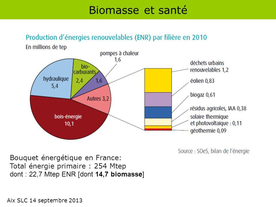 Biomasse et santé Bouquet énergétique en France: