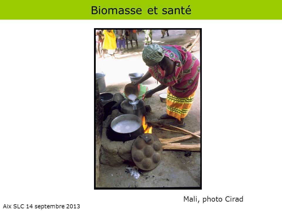 Biomasse et santé Mali, photo Cirad Aix SLC 14 septembre 2013