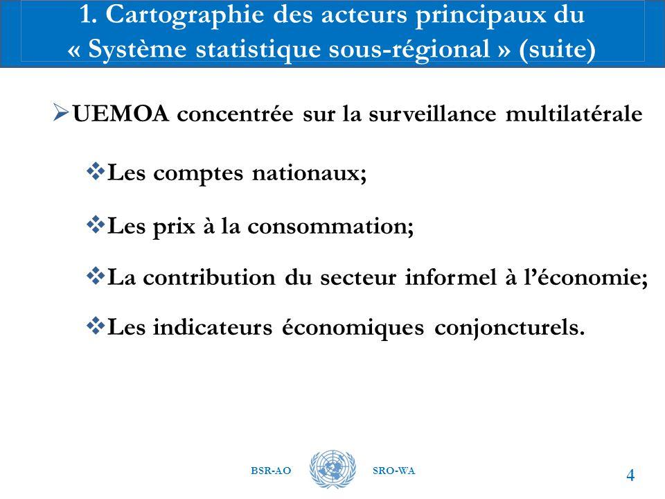 1. Cartographie des acteurs principaux du « Système statistique sous-régional » (suite)