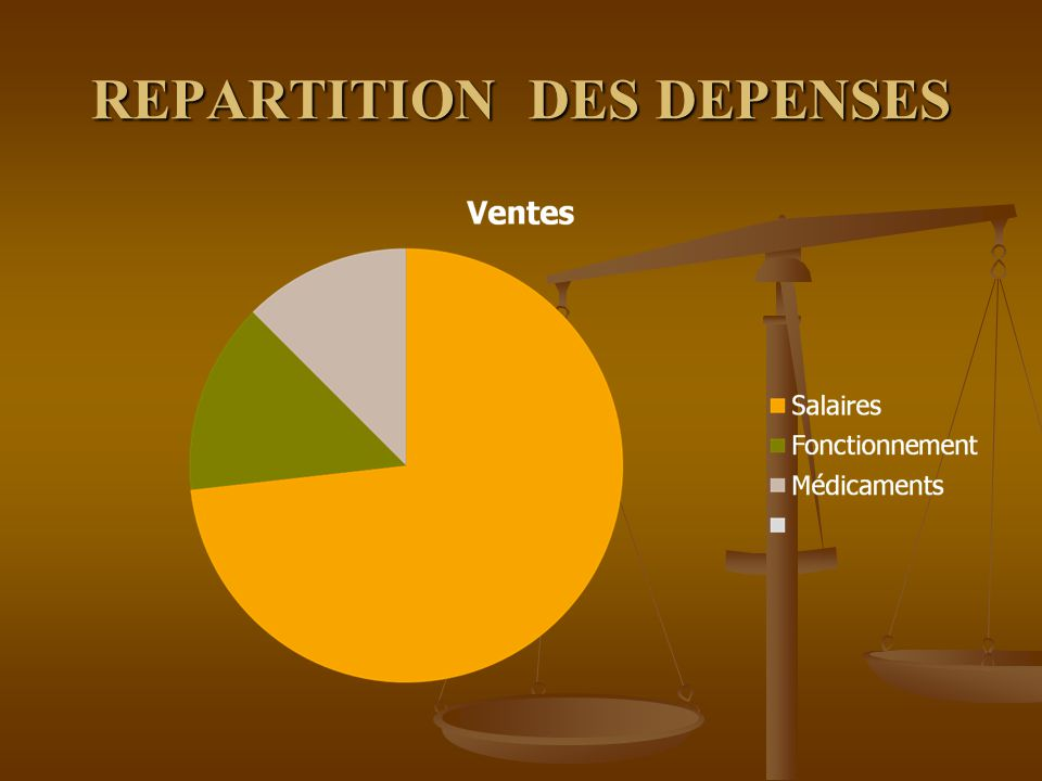 REPARTITION DES DEPENSES