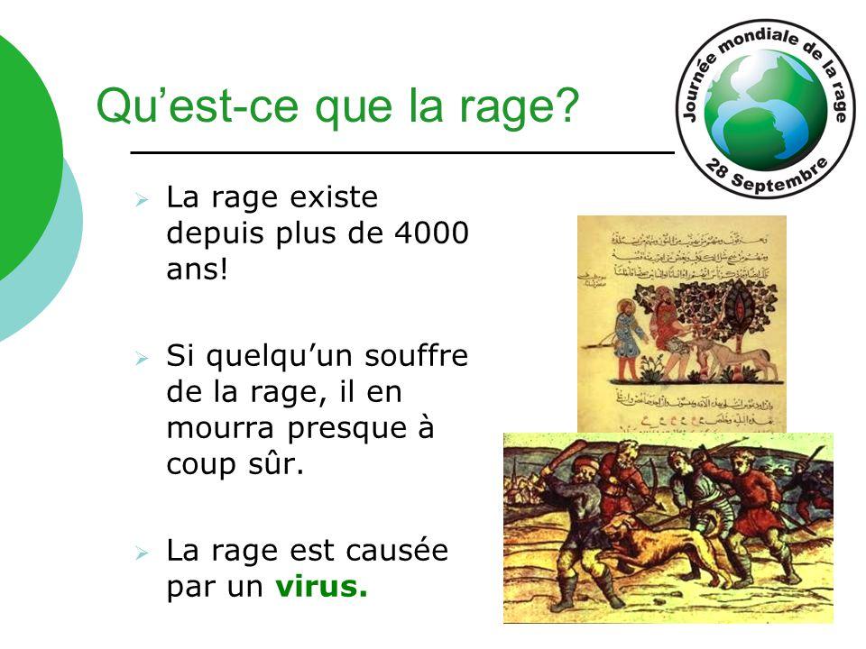 Qu'est-ce que la rage La rage existe depuis plus de 4000 ans!