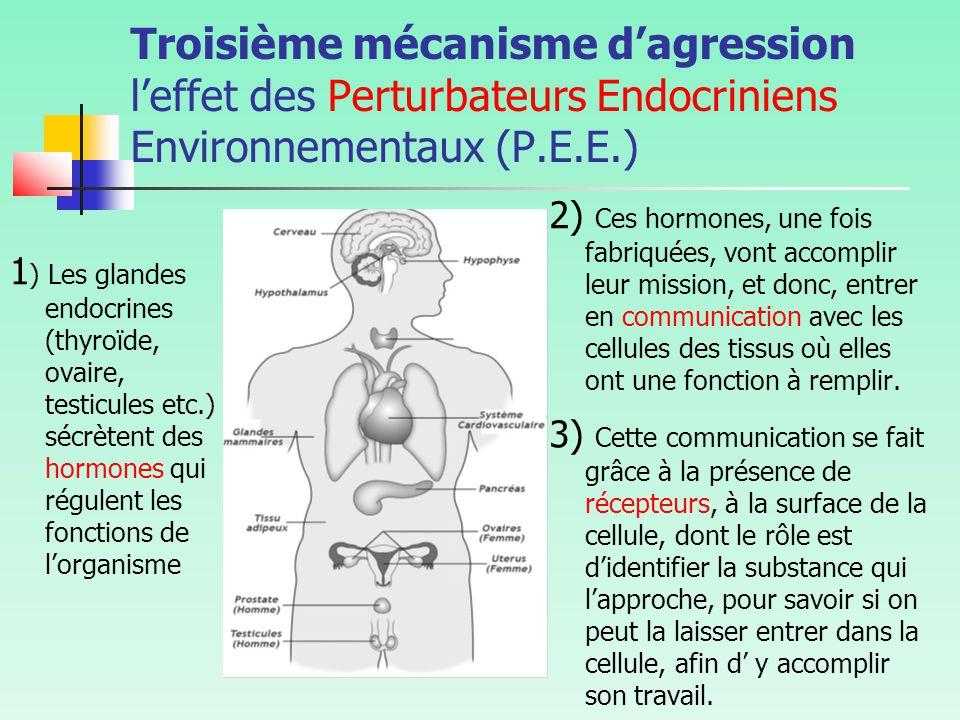 Troisième mécanisme d'agression l'effet des Perturbateurs Endocriniens Environnementaux (P.E.E.)