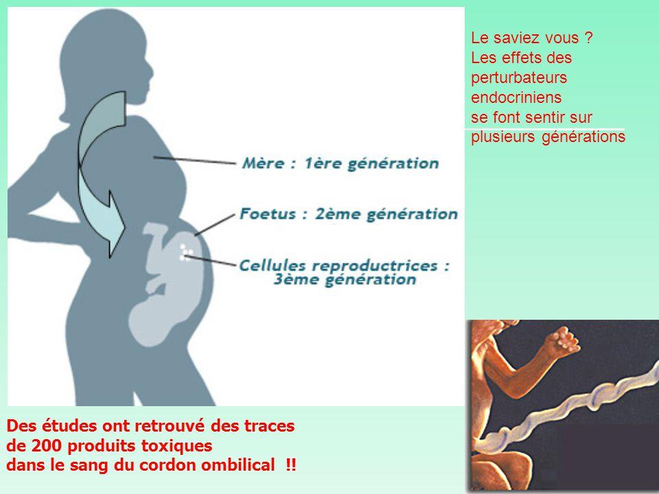 Le saviez vous Les effets des perturbateurs endocriniens. se font sentir sur plusieurs générations.