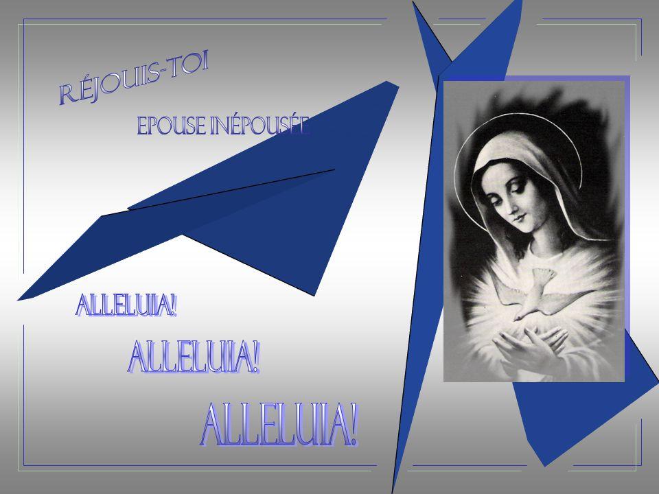 Réjouis-toi Epouse inépousée Alleluia! Alleluia! Alleluia!