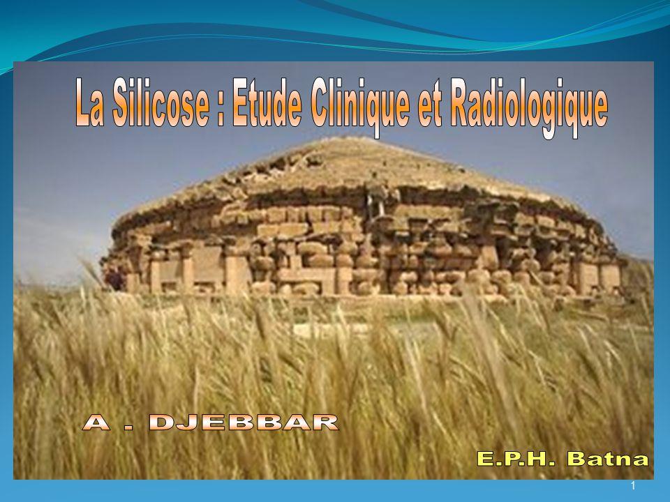 La Silicose : Etude Clinique et Radiologique