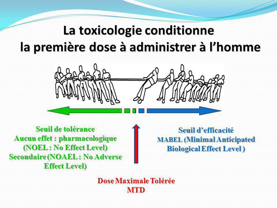 La toxicologie conditionne la première dose à administrer à l'homme