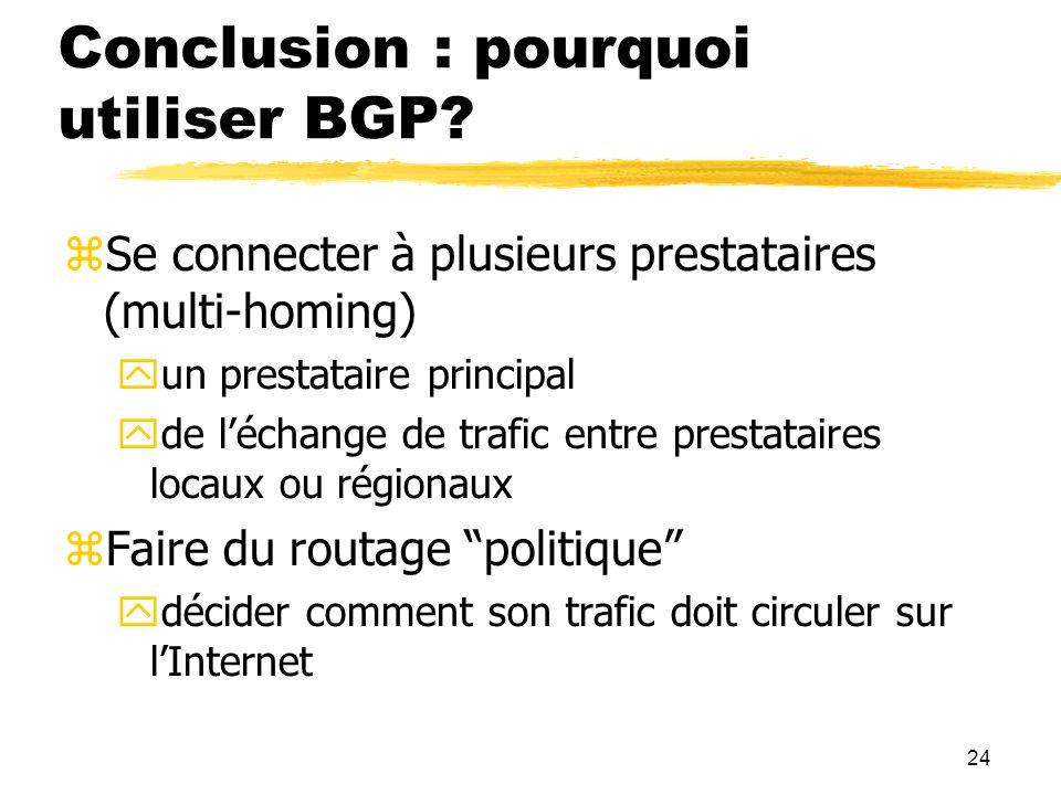 Conclusion : pourquoi utiliser BGP