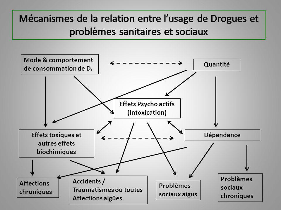 Mécanismes de la relation entre l'usage de Drogues et problèmes sanitaires et sociaux