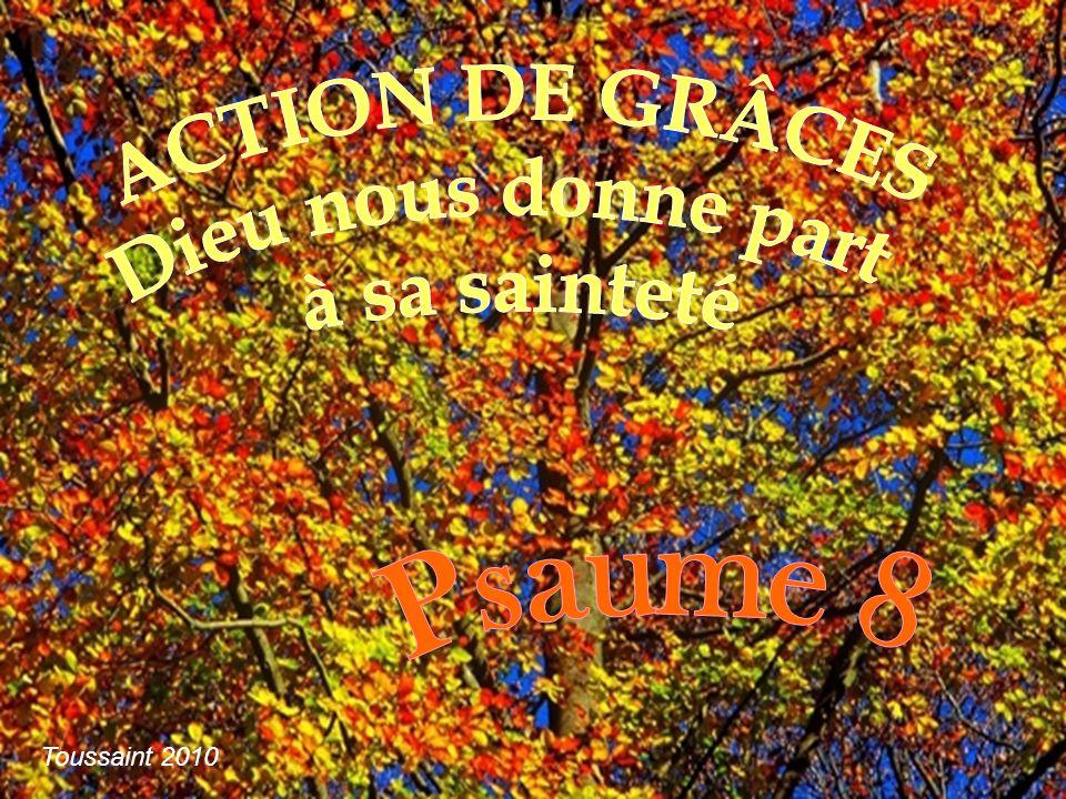 ACTION DE GRÂCES Dieu nous donne part à sa sainteté