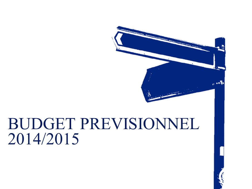 BUDGET PREVISIONNEL 2014/2015