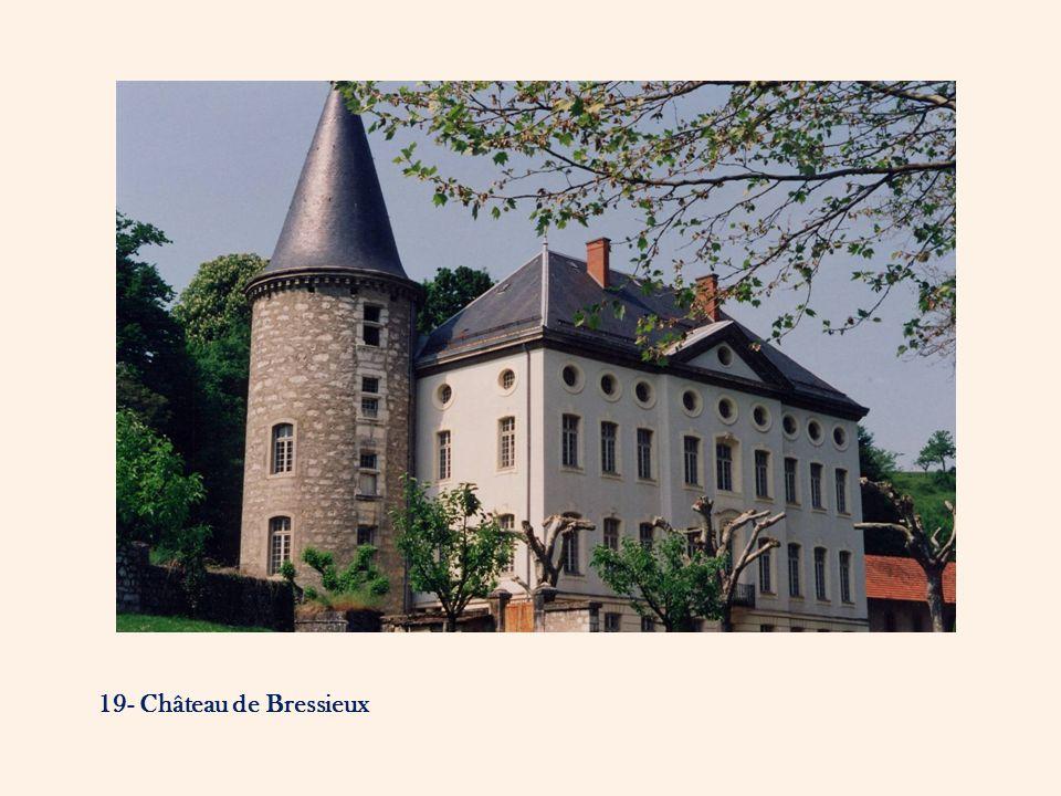 19- Château de Bressieux