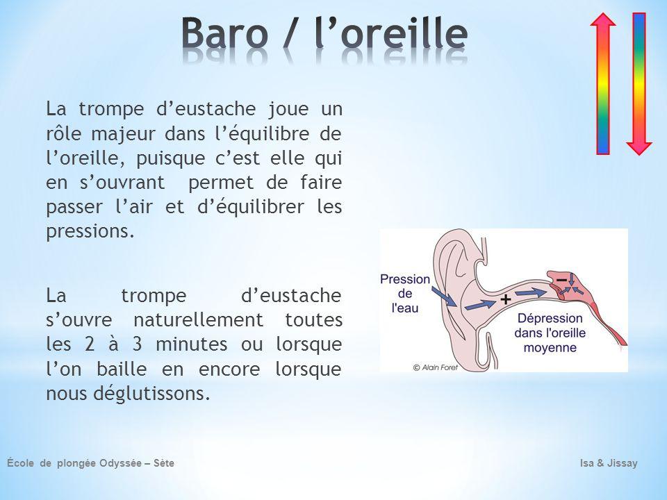 Baro / l'oreille