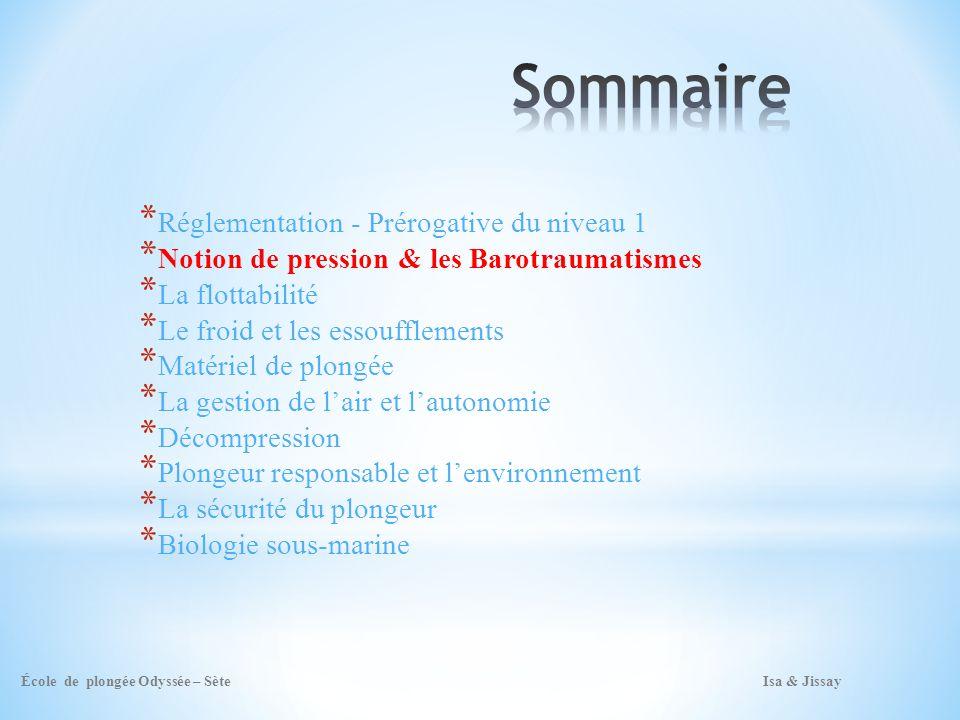 Sommaire Réglementation - Prérogative du niveau 1