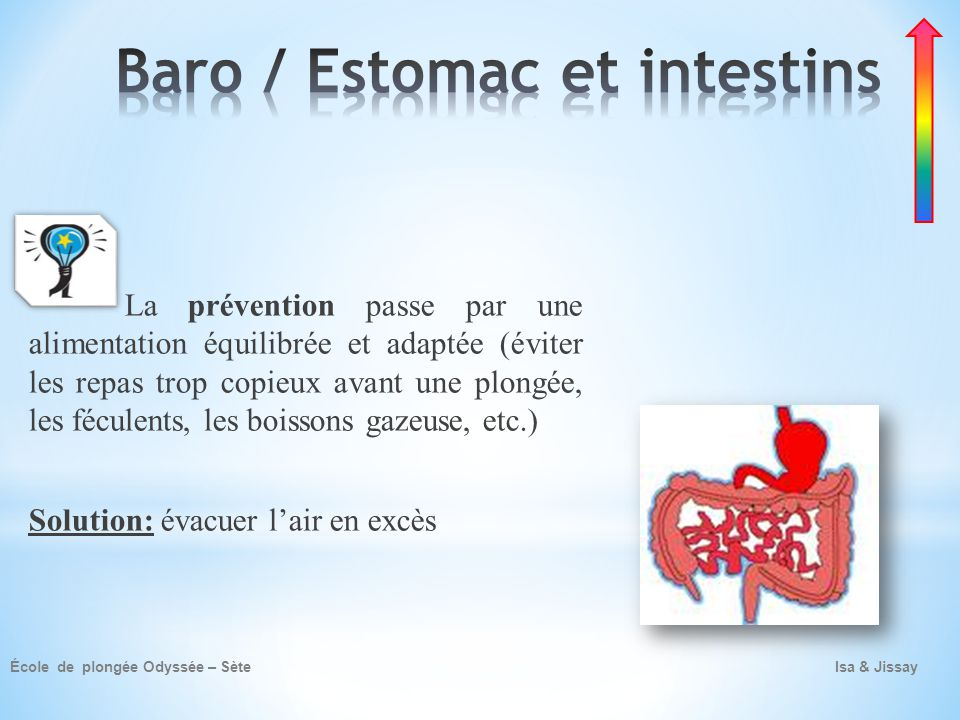 Baro / Estomac et intestins
