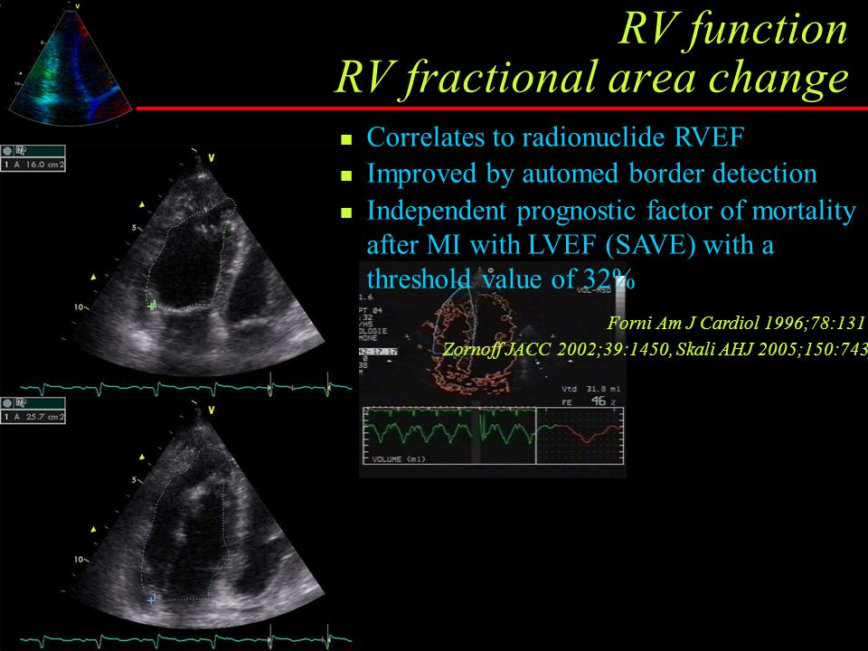 RV function RV fractional area change