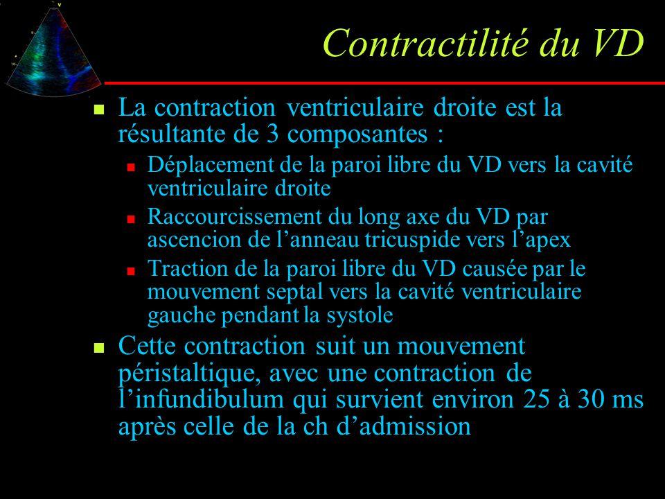 Contractilité du VD La contraction ventriculaire droite est la résultante de 3 composantes :