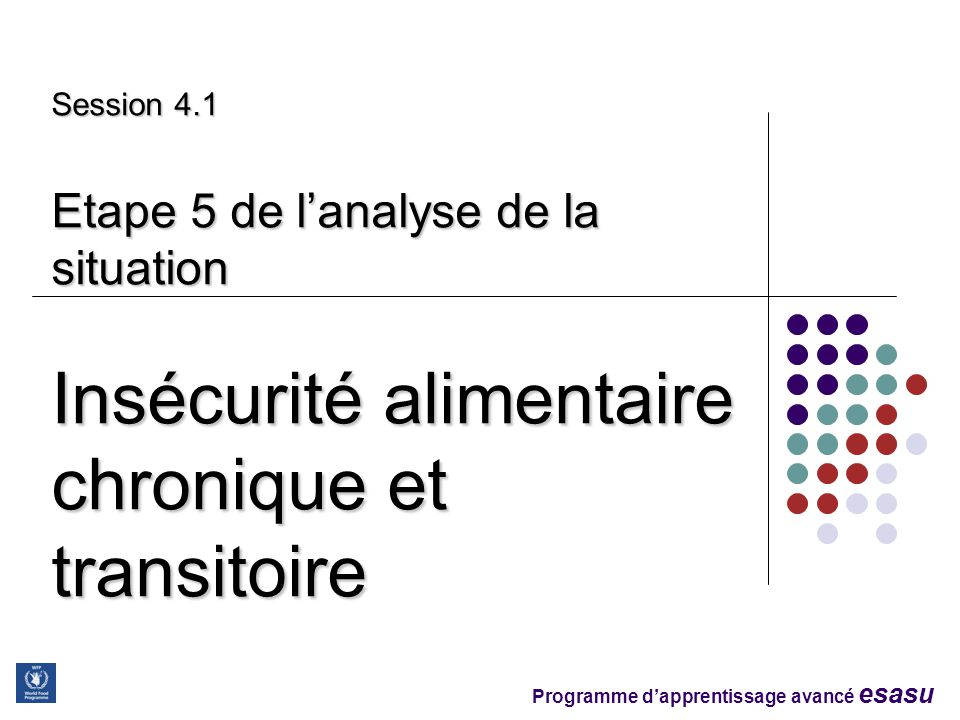 Session 4.1 Etape 5 de l'analyse de la situation Insécurité alimentaire chronique et transitoire