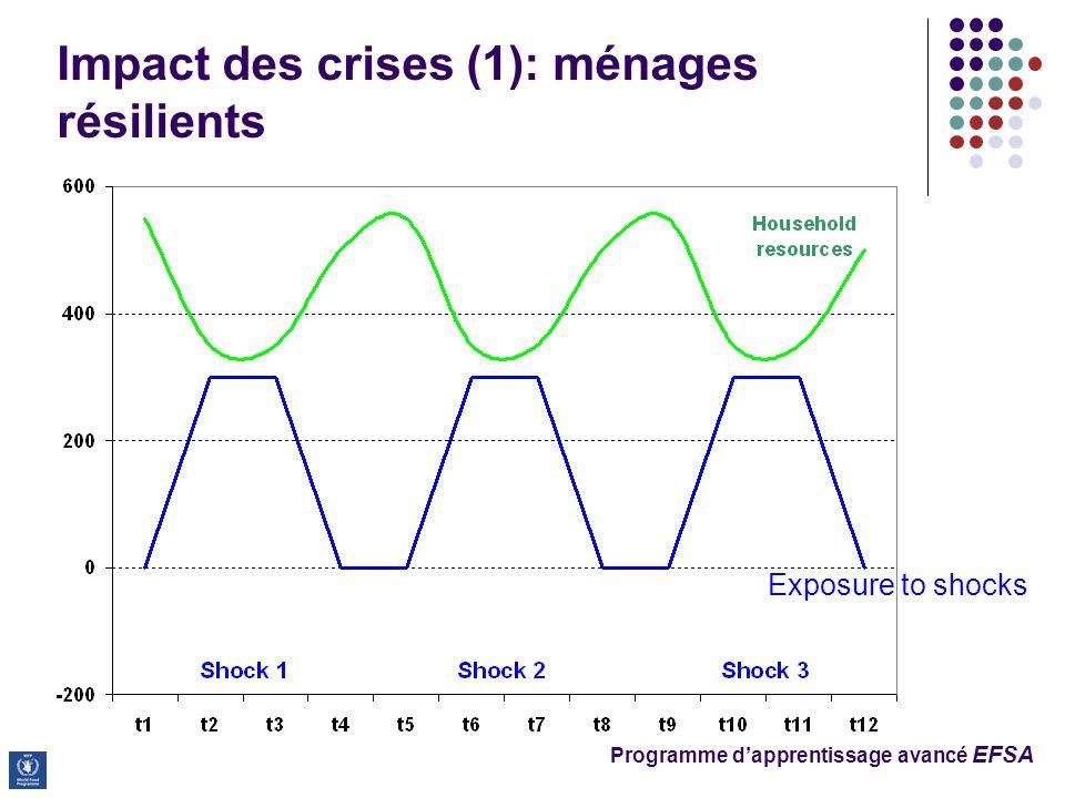 Impact des crises (1): ménages résilients