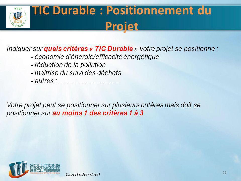 TIC Durable : Positionnement du Projet