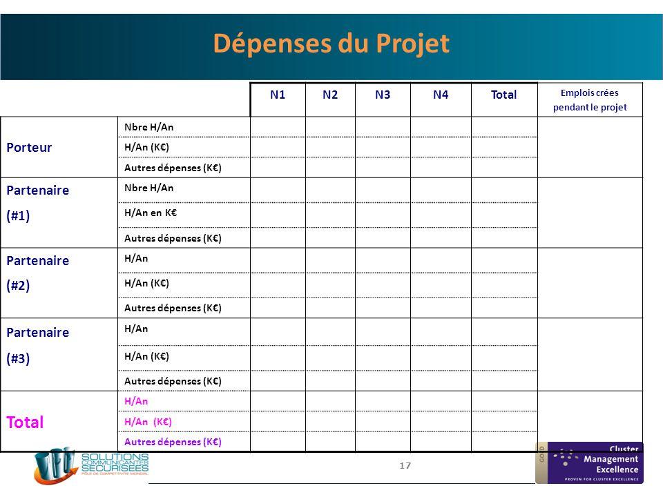 Dépenses du Projet Porteur Partenaire (#1) (#2) (#3) N1 N2 N3 N4 Total