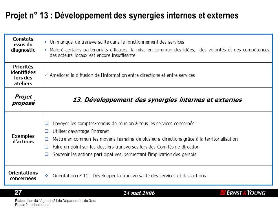 Projet n° 13 : Développement des synergies internes et externes