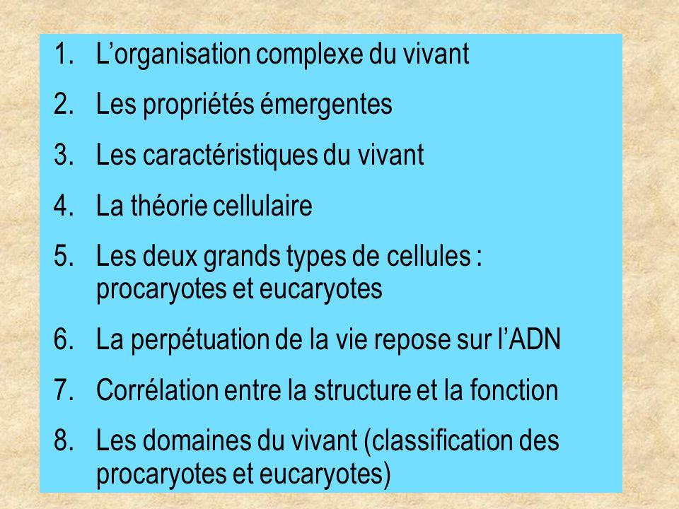 L'organisation complexe du vivant