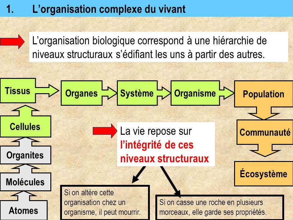 1. L'organisation complexe du vivant