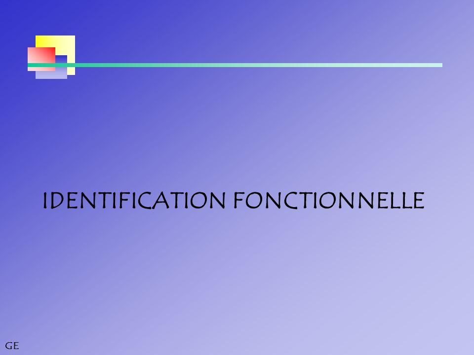 IDENTIFICATION FONCTIONNELLE