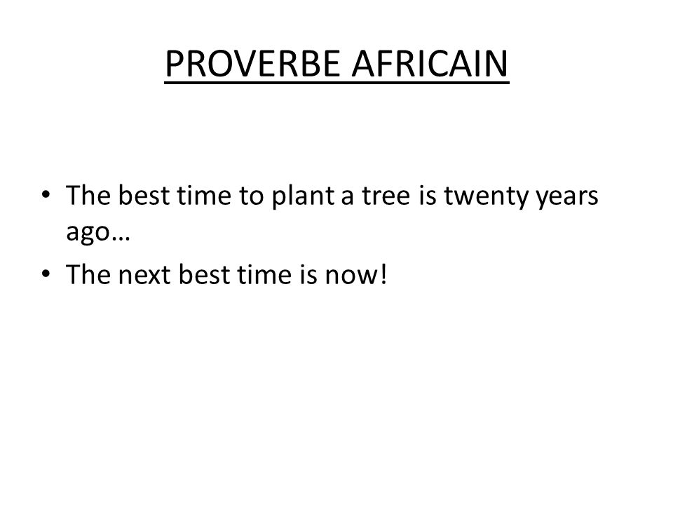 PROVERBE AFRICAIN The best time to plant a tree is twenty years ago…