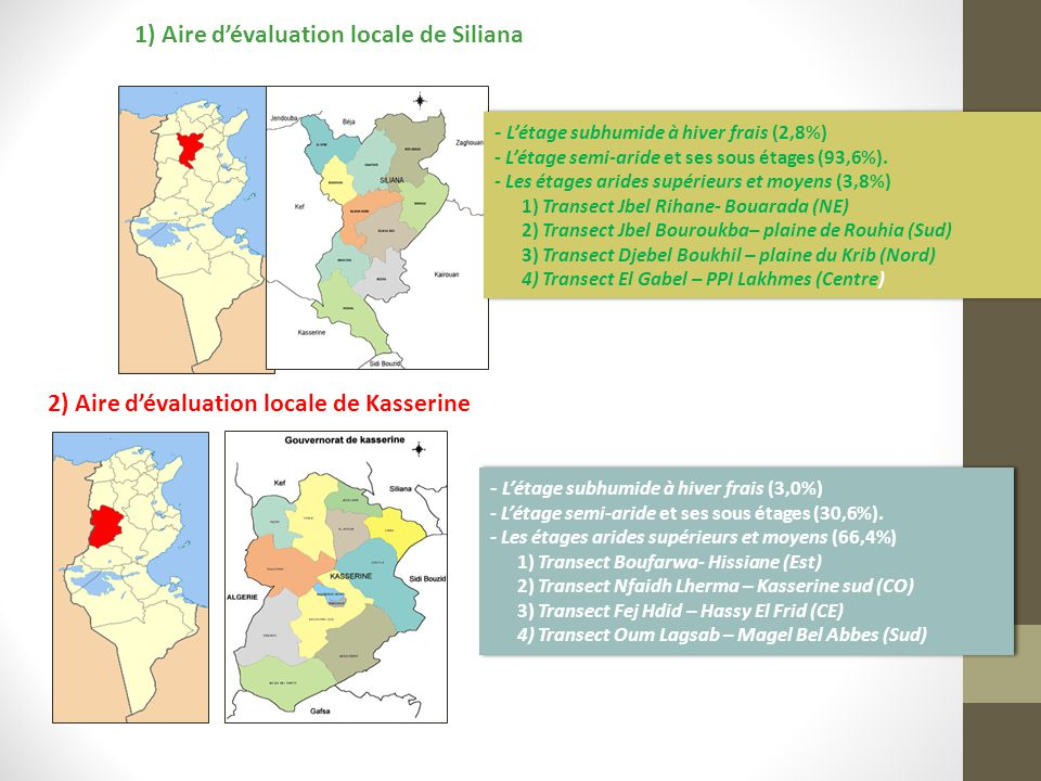 1) Aire d'évaluation locale de Siliana