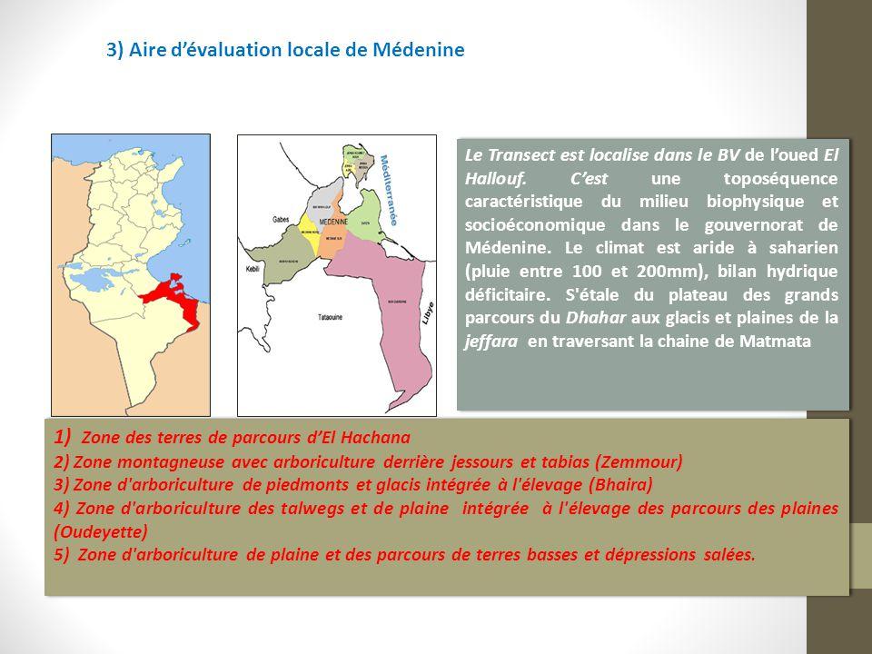 3) Aire d'évaluation locale de Médenine