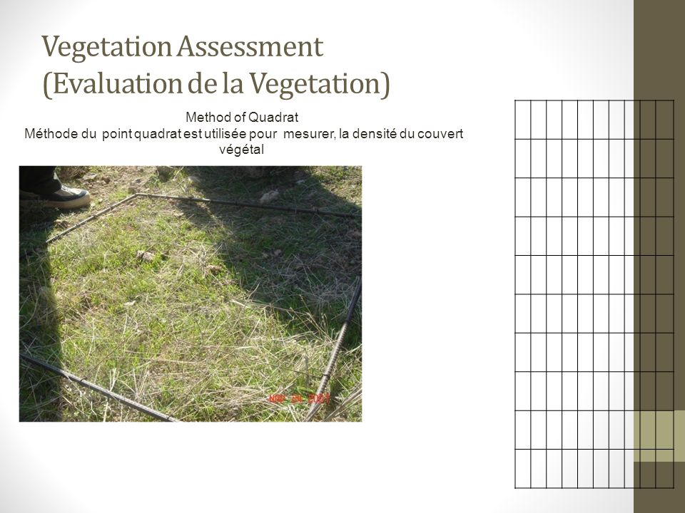 Vegetation Assessment (Evaluation de la Vegetation)