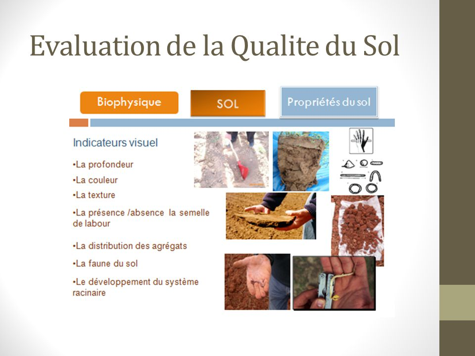 Evaluation de la Qualite du Sol