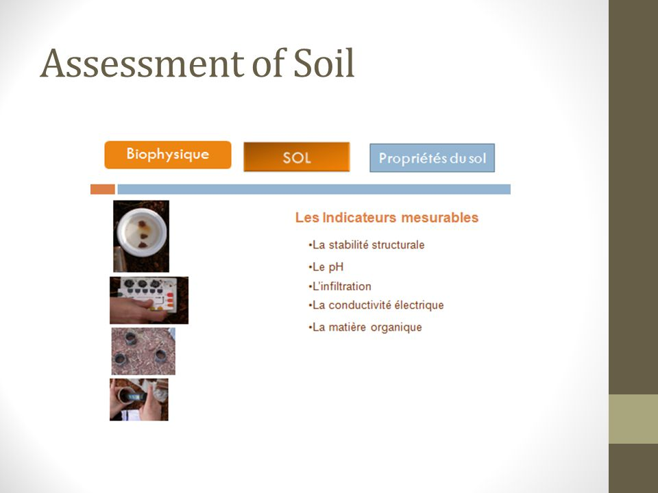 Assessment of Soil