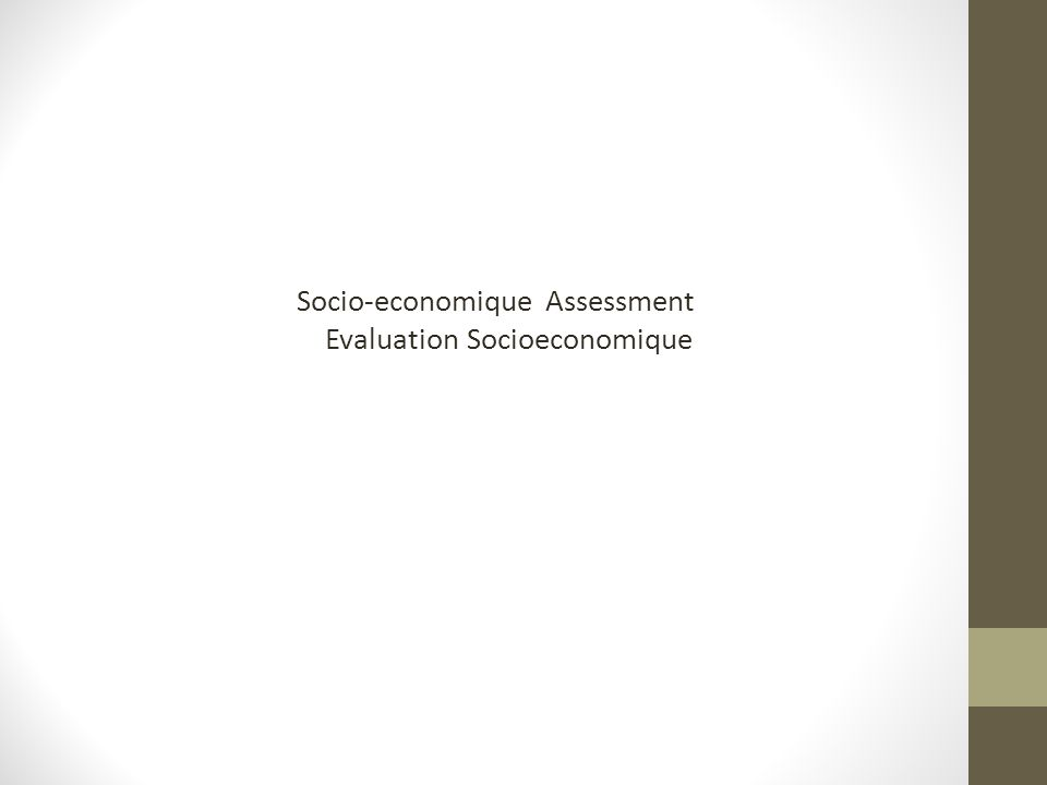 Socio-economique Assessment Evaluation Socioeconomique